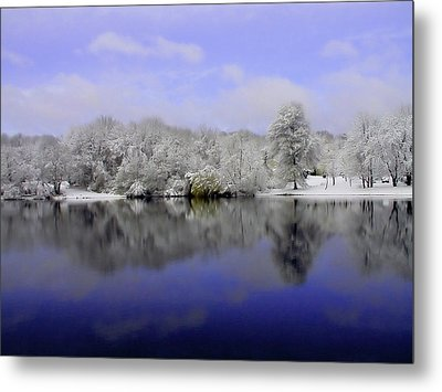 Winter View Metal Print by Karol Livote