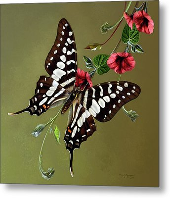 Zebra Swallowtail Butterfly Metal Print by Thanh Thuy Nguyen