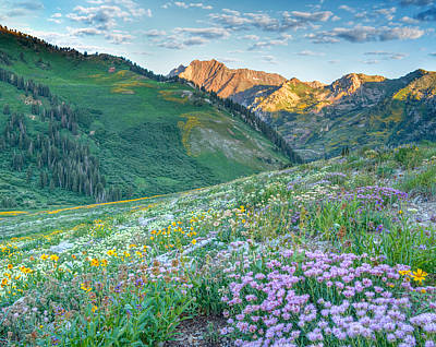 Wasatch Mountains Utah Print by Utah Images