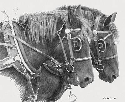 Draft Horses Drawing - Black Team by Bethany Caskey