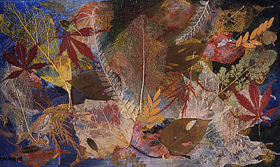 Abstracts Mixed Media - Fallen Treasures A Collage Of Dried Leaves by Phil Albone