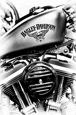 Photograph - Harley Davidson Iron Motorcycles by Tim Gainey