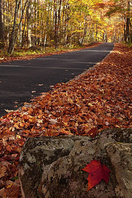Roaring Fork Motor Trail In Autumn Print by Andrew Soundarajan