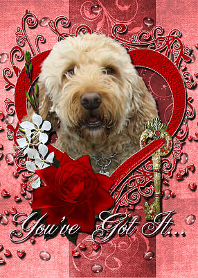 Retrievers Digital Art - Valentines - Key To My Heart Goldendoodle by Renae Laughner