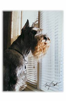Waiting At The Window Print by Maxine Bochnia