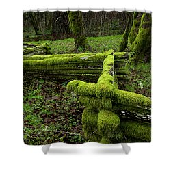 Mossy Fence 4 Shower Curtain by Bob Christopher