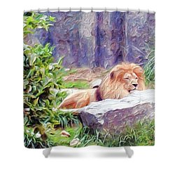 The King At Rest Shower Curtain by Methune Hively