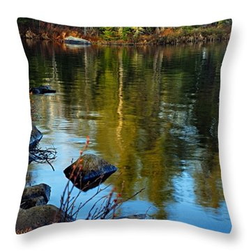 Morning Reflections On Chad Lake Throw Pillow by Larry Ricker