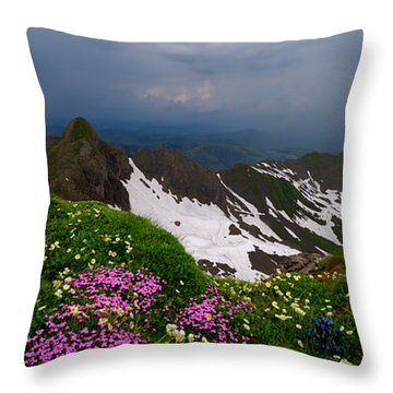 The Alps Wildflowers Throw Pillow by Debra and Dave Vanderlaan