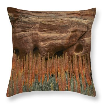 Wildflowers In The Desert Land Of Petra Throw Pillow by Annie Griffiths