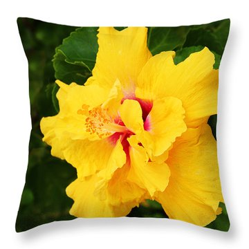 Yellow Double Hibiscus Throw Pillow by Kerri Ligatich