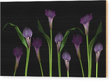 Calla Lilies Wood Print by Marlene Ford
