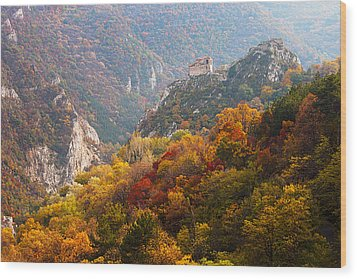 King's Fortress Wood Print by Evgeni Dinev