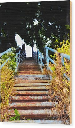 Manayunk Steps Wood Print by Bill Cannon