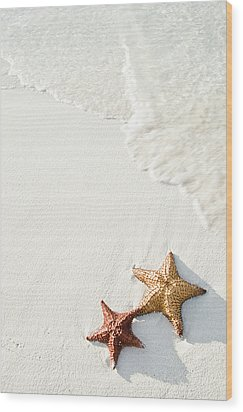 Starfish On Tropical Beach Wood Print by Mehmed Zelkovic