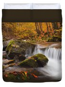 Autumn Forest Duvet Cover by Evgeni Dinev