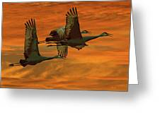 Cranes At Sunrise Greeting Card by Larry Linton
