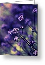 Lavender Garden I Greeting Card by Jayne Logan Intveld