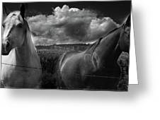 Us Greeting Card by JC Photography and Art