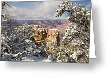 Winter Time On The South Rim Greeting Card by Michael S. Lewis
