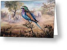 African Roller Greeting Card by Brenda Thour