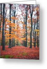 Autumn Whispers I Greeting Card by Artecco Fine Art Photography
