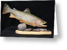 Cutthroat Trout On The Rocks Greeting Card by Eric Knowlton
