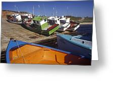 Fishing Boats - Magdalen Islands Greeting Card by Carol Barrington