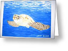 Green Sea Turtle Greeting Card by Jeff Lucas