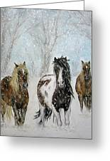 Snow Horses Greeting Card by Teresa Vecere