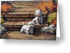 Sunshine And Shadow--westies Greeting Card by Alice Taylor
