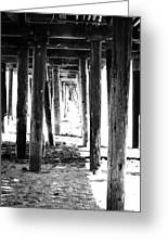 Under The Pier Greeting Card by Linda Woods