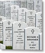 National Cemetery Of The Alleghenies Metal Print by Amy Cicconi