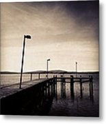 2 Bird Dock Metal Print by CML Brown