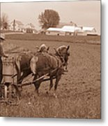 Amish Farmer Metal Print by Janet Pugh