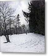 Berkshires Winter 9 - Massachusetts Metal Print by Madeline Ellis