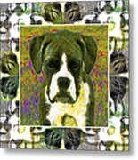 Boxer Dog 20130126 Metal Print by Wingsdomain Art and Photography