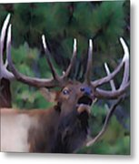 Call Of The Wild Metal Print by Shane Bechler