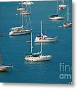 Caribbean Sailboats Metal Print by Amy Cicconi