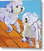 Catch Me     Metal Print by Pat Saunders-White