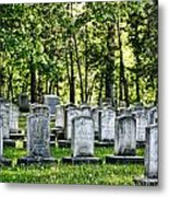 Civitl War Warrior Graves Metal Print by Linda Phelps