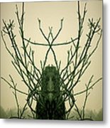 Creature Of The Wood Metal Print by David Gordon