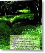 Cut Your Own Path Metal Print by Mike Flynn