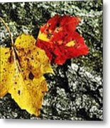 Deux Feuilles Metal Print by JAMART Photography