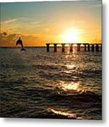 Dolphin Jumping Out Of The Sea In Florida Metal Print by Fizzy Image