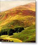 Find The Soul. Golden Hills Of Wicklow. Ireland Metal Print by Jenny Rainbow