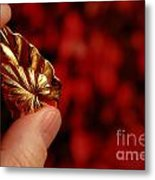 Golden Leaves Metal Print by Amy Cicconi