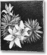 Lilies In Pen And Ink Metal Print by Janet King
