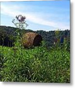 Lone Hay Round Metal Print by Willy  Nelson