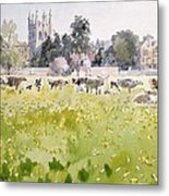 Looking Across Christ Church Meadows Metal Print by Lucy Willis
